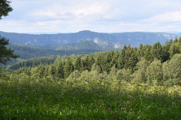 11. Sparkassen PanoramaTOUR Sächsische Schweiz – 09. bis 11. August 2019